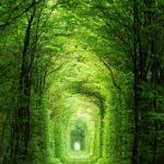 Најлепша места на свету – Тунел Љубави – Украјина